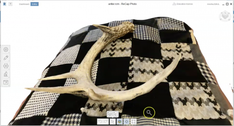 antler model created in Autodesk Recap Photo