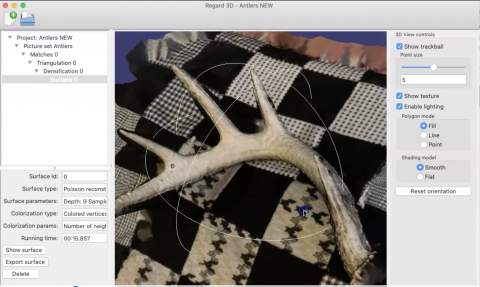 antler model created in Regard 3D